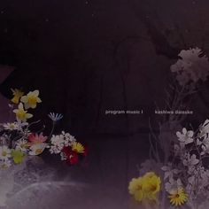 Program Music I - kashiwa daisuke
