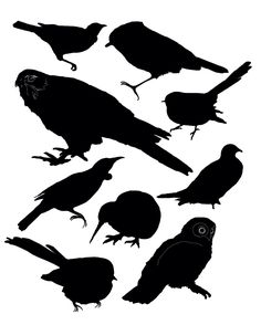 New Zealand bird silhouettes