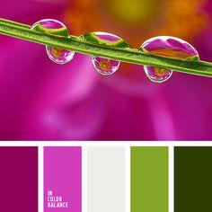 carmesí vivo, color blanco sucio, color fucsia, color fucsia fuerte, color fucsia vivo, frambuesa, paletas de diseño, rosado vivo, rosado y verde lechuga, selección de colores para el hogar, tonos rosados, tonos verdes, verde lechuga y rosado, verde lechuga y verde oscuro, verde oscuro,