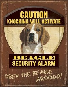 Mia Lane Warning Beagle Security Tin Sign 12 x 16 What you Wish your Beagle Would Pledge to You We do not have a doorbell. I will not bark each time I hear one on TV. I will not play tug-of-war with Dad's underwear while he's on the toilet. The garbage collector is not stealing our stuff....(I'll let it go...let it go...) I do not need to suddenly stand straight up while I'm lying under the coffee table. I will not roll my toys behind the fridge. I will shake the rainwater out of my coat b