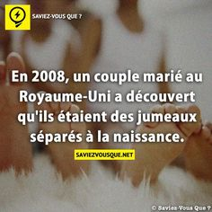 oh le choc ! Fact Quotes, Funny Quotes, Life Quotes, Real Facts, Funny Facts, Quote Citation, Image Fun, New Things To Learn, Haha Funny