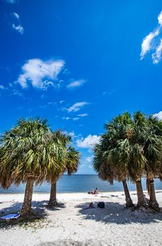 When you visit Florida, consider taking a road trip to North Florida for less crowds but cool things like natural springs, kayaking, scalloping, airboat rides and fresh seafood. Check out this list of things to do in North Florida. #travel #Florida #vacations #Floridatravel #beaches #Floridabeaches #NorthFlorida Visit Florida, Old Florida, Florida Vacation, Florida Travel, Florida Beaches, Usa Travel, Cedar Key Fl, Airboat Rides, Stuff To Do