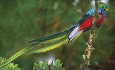 paisajes de colombia mas hermosos - Buscar con Google