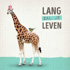 Grappige verjaardagskaart met Giraffe, verkrijgbaar bij #kaartje2go voor €1,79