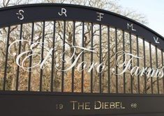 Our client had a vision for a driveway gate to his South Texas ranch. He wanted to incorporate a lot of brands and pay homage to the property's history. We built this steel gate and painted it satin black. The ranch name is in a scrolling, elegant font that we painted white and set on stand-offs to make it pop. We enjoyed this project. Let us help you with your gate! #aberdeengate Modern Farmhouse Style, Modern Rustic, Ranch Names, Iron Gate Design, Custom Gates, Steel Gate, Texas Ranch, Driveway Gate, South Texas