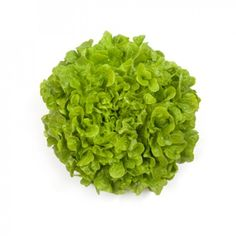 Can be produced in the spring/autumn.Strong against internal tipburn and has a nice base with a round shape and a shiny light green color. Lettuce Seeds, Agriculture, Green Colors, Herbs, Garden, Ideas, Garten, Colors Of Green, Lawn And Garden