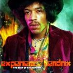 The Experience Hendrix tour, a trubute to Jimi Hendrix will be back in 2014. #tickethub #jimihendrix