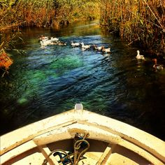 akyaka river mugla
