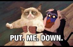Grumpy Cat Quotes Titanic images
