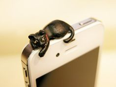 A Black Cat on an iPhone