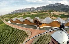 I always try to discover Rioja in a special way. Do you want try it? Say me #tourism #winetours #travel #wine #winelover #turismo #enoturismo #experience #winetastelovers #riojawine #gastronomía #visitSpain #vino #viaje #tapas #winetasting #instariojawine #gastronomy #instawinetours #winecountry #wineries #worldplaces #winetrip #winetravel #viajar #grapevines #winetourism #winetourist #lp