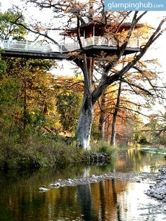 Tree House Rental Texas | Tree Houses for rent TX #glamping #july4 #happybirthdayamerica