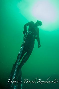 Pêcheur sous-marin regagnant la surface, son arbalète le long des jambes 3654 | Flickr: partage de photos! Spearfishing freediver