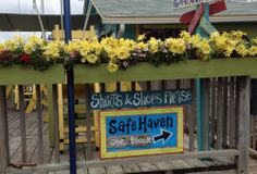 Safe haven Southport NC