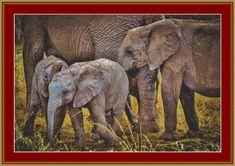 Elephants Cross Stitch Pattern by Mydreamsofavalon on Etsy, $6.00