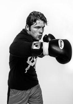 new product adad9 ea1ec Canelo Alvarez Saul Canelo Alvarez, Boxing Quotes, Combat Sport,  Professional Boxing, Boxing