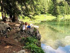 Ausflugstipp für die ganze Family: Almsee-Rundwanderweg in Filzmoos | Gänseblümchen & Sonnenschein Golf Courses, Small Places, Sunshine, Hiking, Felting, Vacation, Plants, Summer