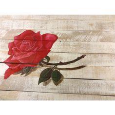 Rode Roos van Bet Bee