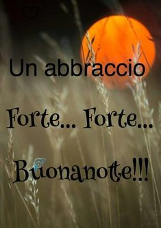 Immagini bellissime per Buonanotte 9337282 Good Day, Good Morning, Italian Greetings, Good Night Gif, Short Messages, Italian Quotes, Nighty Night, Romantic Quotes, Slaap Lekker