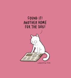 Lingvistov.com  #illustrations #doodles #joke #humor #cartoon #cute #funn - Funny Cat Quotes #funnycat #catquotes #cats Funny Cat Compilation, Funny Cat Videos, Funny Cat Pictures, Funny Animals With Captions, Funny Animal Jokes, Funny Cats, Cats Humor, Cat Quotes, Funny Quotes