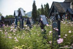 Cimitirul Vesel at Sapanta by Mioara Chiparus
