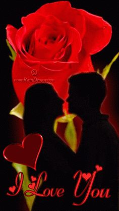 "Distance ""Love"" More Exiting Fun It Works www. Love Heart Images, I Love You Pictures, Beautiful Love Pictures, Beautiful Gif, Beautiful Roses, Love Heart Gif, Love You Gif, You Dont Love Me, Flower Phone Wallpaper"
