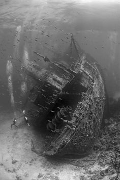 Shipwrecks are some of the most eerie things to behold underwater