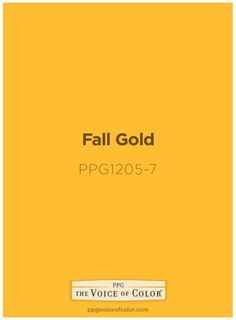 pumpkin spice ppg16-13 paint colorppg voice of color learn