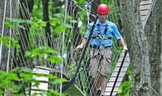 Eco Adventure Tour | Scenic Caves Nature Adventures Treetop trekking in Collingwood