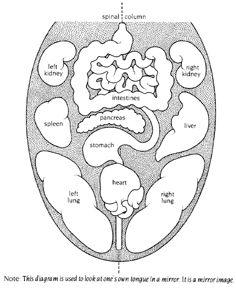 Ayurvedic Tongue Chart from Dr. Vasant Lad