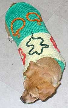 Sullivan Basic knitted dog sweater pattern that can be adapted for many dog sizes and themes. Knitted Dog Sweater Pattern, Knit Dog Sweater, Dog Pattern, Dog Sweaters, Sweater Knitting Patterns, Knit Patterns, Baby Knitting, Puppy Collars, Cat Collars