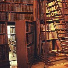 Une bibliothèque avec un passage secret , #bibliotheque #passage #secret