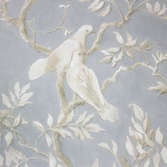 Doves Wallpaper A wide width wallpaper featuring a beautiful print by Flora Roberts depicting serene doves nestled in branches in ivory on a mottled dark grey background. Bathroom Wallpaper Cream, Cream Wallpaper, Bird Wallpaper, Seaside Wallpaper, Blue Backgrounds, Wallpaper Backgrounds, Wallpapers, Phone Backgrounds, Floral Pattern Wallpaper