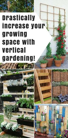 DIY Vertical Garden Ideas: See the best DIY vertical gardening ideas plus learn what veggies and herbs will work best in your new garden space.  | You Should Grow