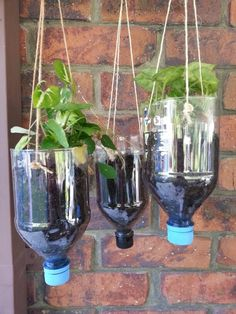 Recycled bottles