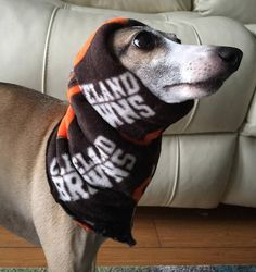 0255b3e3e NFL Team Fleece Cleveland Browns Hoodie for Italian Greyhounds Brown  Hoodie