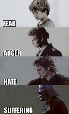 Fear leads to anger, anger leads to hate, and hate...leads to suffering. –Yoda
