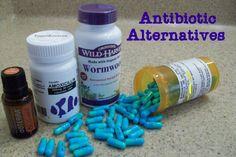 Antibiotic Alterntatives: Herbs, Foods, Teas, Oils, Fish Antibiotics | Preppers Survive | #prepbloggers #natural #medicine