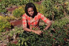 Michelle und Barack Obama: Vorbildlich gesund