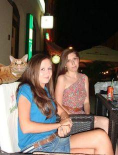 Bir anda ortaya çıkan ve fotoğrafı bambaşka bir duruma düşüren birbirinden sevimli hayvanlar :))