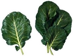 Collards (Brassica oleracea) are a staple throughout southeastern gardens including Virginia. Relatives of the cabbage family, collards do not form heads but produce loose, thick leaves. Collards are suitable for use as fresh greens or cooked. How To Cook Collards, Fresco, Southern Style Collard Greens, Collard Greens Recipe, Turnip Greens, Companion Planting, Cabbage, Canning, Salsa Roja