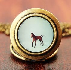 The Horse Photo Locket NecklaceCollaboration by HeartworksByLori
