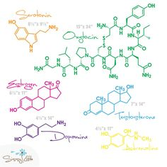 would I be the nerdiest person ever if I had little framed prints of these molecules above my desk?