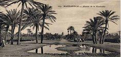 Buon venerdi ,  oggi parliamo di storia francese ( ahimè :-) ) in Marocco, con un pizzico di italiano, scommetto che non sapete che nel 1913 a Marrakech nel quartiere Gueliz abitavano 69 italiani.