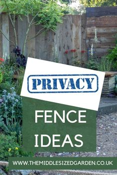 How to choose fences for privacy - stylish, contemporary and natural fence options plus what you need to know #middlesizedgarden Privacy Trellis, Garden Privacy Screen, Privacy Hedge, Backyard Privacy, Privacy Fences, Low Maintenance Garden Design, Fence Options, Natural Fence, Garden Screening