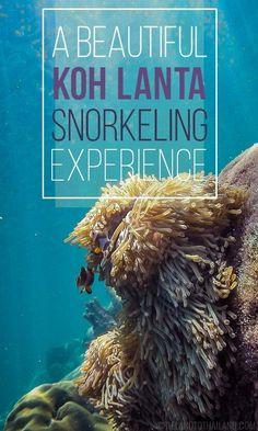 A Beautiful Koh Lanta Snorkeling Experience - Tieland to Thailand