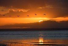ما هو مفهوم العبادة وما هي حاجة الانسان الى العبادة تعريف العبادة لغة واصلاحا Celestial Outdoor Sunset