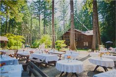 rustic wedding reception - Woodsy Oregon Wedding { Loloma Lodge, McKenzie River, OR / Jane in the Woods Photographie / Woodsy Weddings }