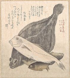 Kubo Shunman | Flounder and Other Fishes | Japan | Edo period (1615–1868) | The Met