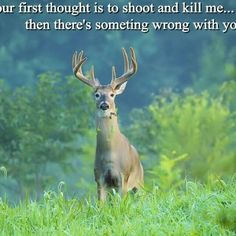 If your first thought is to shoot and kill me ... then there's something wrong with you.